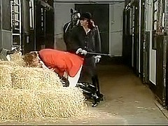 stable anal