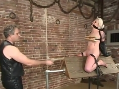 Lorelei Lee and Torque