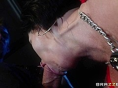 Milfs Like it Big: Police Carnality. Shay Fox, Danny D