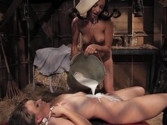 During another day at the barn, two of the milkmaids decide to break up