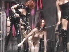 Sexy BD group sex with homo strumpets