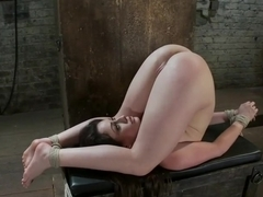 Hogtied:The most beautiful girls on the planet, suffering and cumming.