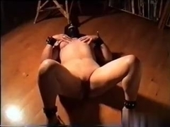 slogger wife entertains her dom