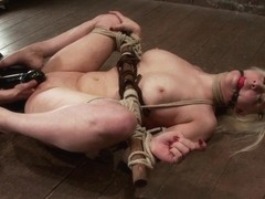 Cherry Torn in Cherry Torn Live Part 3 - HogTied