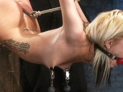Hot Flexible Blond Suffers A Category 5 Suspension. Anal Hook, Heavy Nipple Weights, Made To Cum. .
