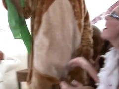 Dancing bear gives facial cumshot